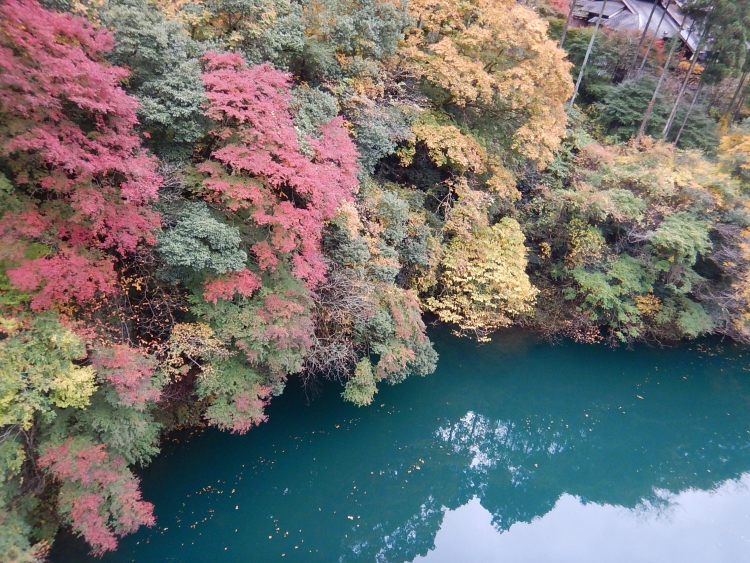 白丸湖紅葉カヤック体験始まります