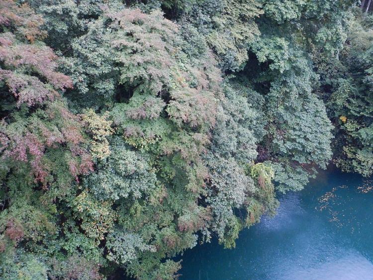 奥多摩白丸湖の紅葉(2017/10/15)