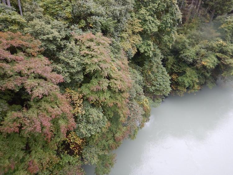 奥多摩白丸湖の紅葉(2017/10/25)