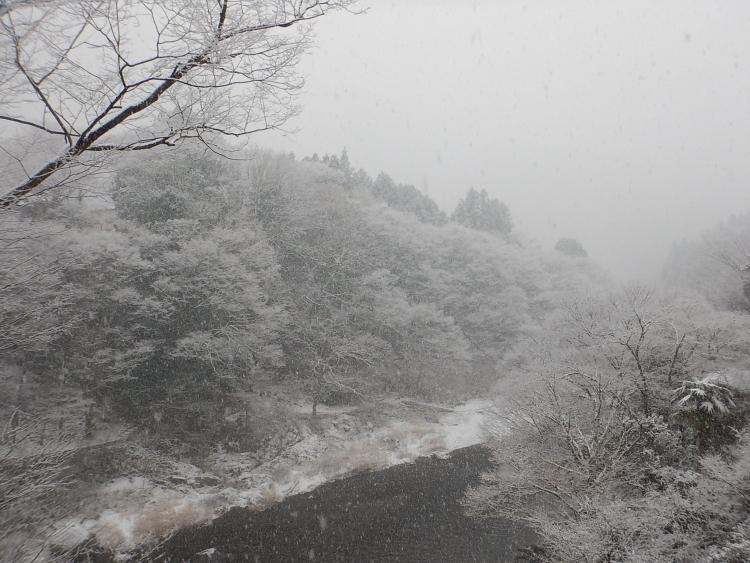 雪景色の御嶽渓谷