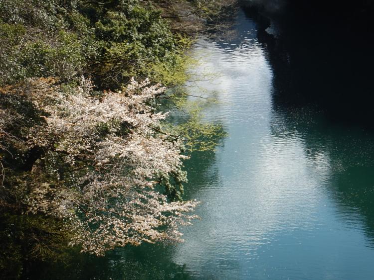 白丸湖カヤック体験始まります